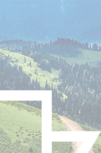 Baran Trail Race Węgierska Górka